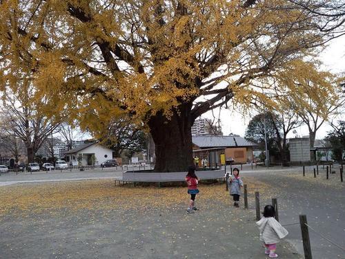2011.12.23 006.JPG