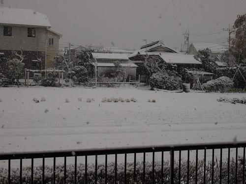 2012.02.29 003.JPG